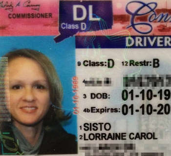 License 2013